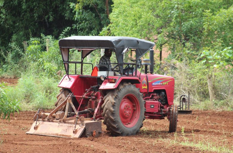 Ploughing on Mango Farm