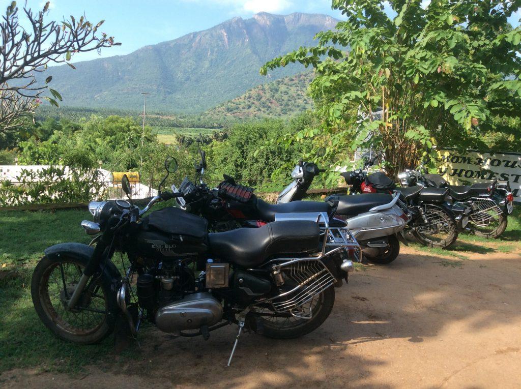 A felt of motorbikes