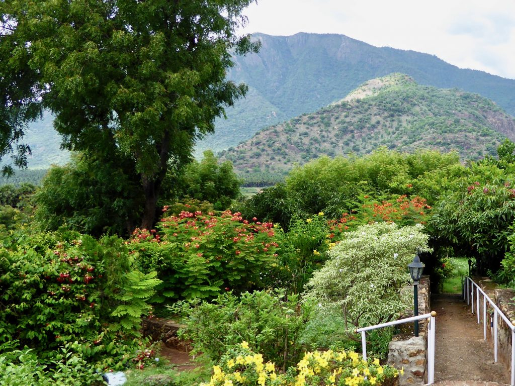 View from Cardamom House Verandah, Gardens and Mountains